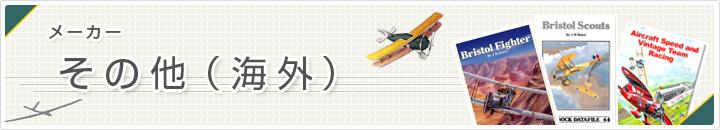 ラジコン飛行機 海外メーカー