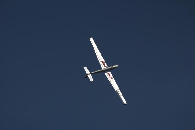 ブラニク50-レッドブル(BLANIK 50 Red Bull)